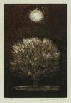 星 襄一 「月と木」 Joichi Hoshi