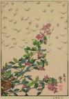 吉田 遠志 「長月-萩とムクドリ」 Toshi Yoshida