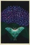 加山 又造 「紫陽花」 Matazo Kayama